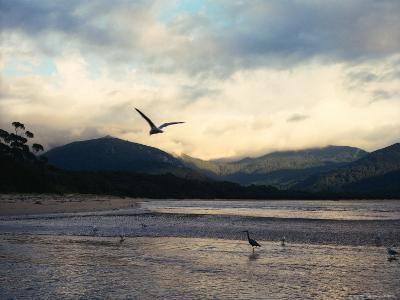 Sealers Cove, Wilsons Promontory National Park-Orien Harvey-Photographic Print