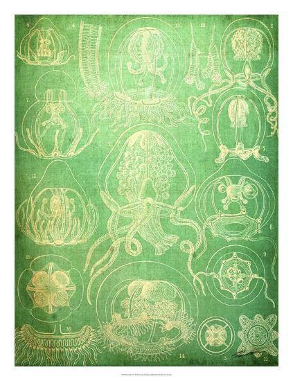 Sealife IV-John Butler-Giclee Print