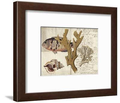 Sealife Journal I-Vision Studio-Framed Art Print