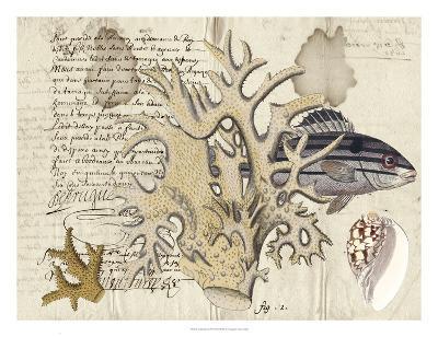 Sealife Journal IV-Vision Studio-Giclee Print