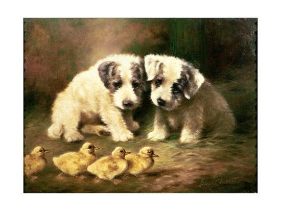 Sealyham Puppies and Ducklings-Lilian Cheviot-Giclee Print