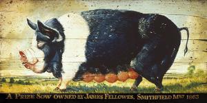 Prize Black Sow by Sean Aherne
