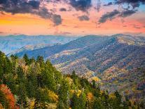 Autumn Morning in the Smoky Mountains National Park-Sean Pavone-Photographic Print