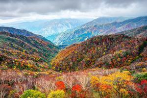 Landscape in Nikko National Park in Tochigi, Japan by Sean Pavone