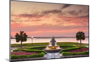 Charleston, South Carolina, USA at Waterfront Park. by SeanPavonePhoto