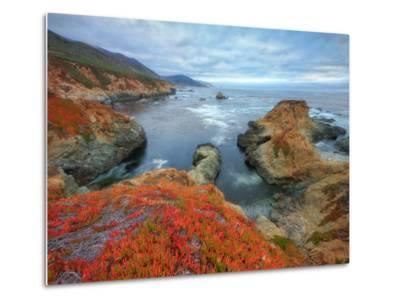 Seascape at Soberanes Point-Vincent James-Metal Print