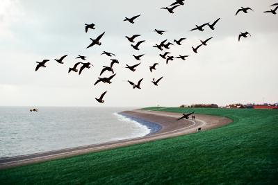 Seascape-Oleh Slobodeniuk-Photographic Print