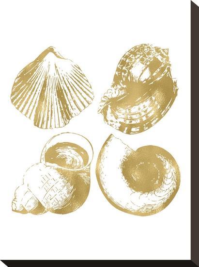 Seashell Quad Golden White-Amy Brinkman-Stretched Canvas Print