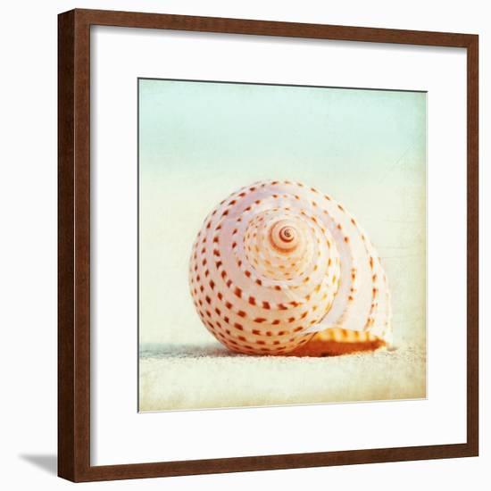 Seashell Voices-Carolyn Cochrane-Framed Photographic Print