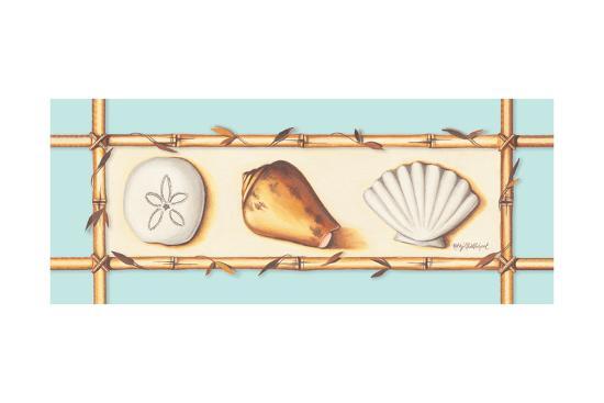 Seashells-Kathy Middlebrook-Art Print