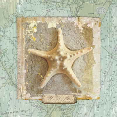 Seashore Collection III-Elizabeth Medley-Premium Giclee Print