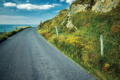Seaside Road-Dennis Frates-Photographic Print