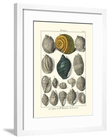 Seaside Treasures III-Dezallier-Framed Art Print