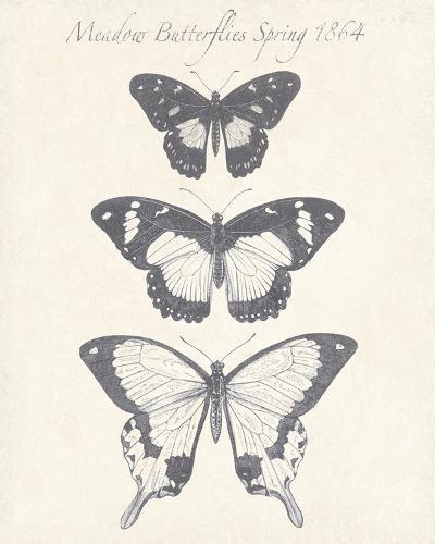 Seasonal Butterflies I-Maria Mendez-Giclee Print