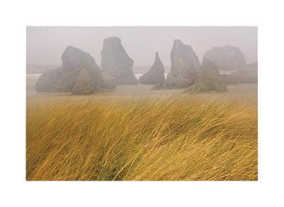 Seastacks and Fog-Donald Paulson-Giclee Print