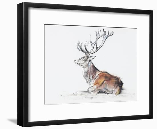 Seated Stag, 2006-Mark Adlington-Framed Premium Giclee Print