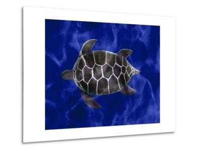 Seaturtle in Deep Blue Water-Rich LaPenna-Metal Print