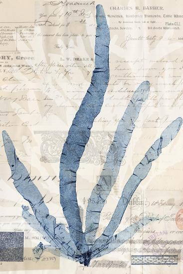 Seaweed Arrangement II-Vision Studio-Art Print