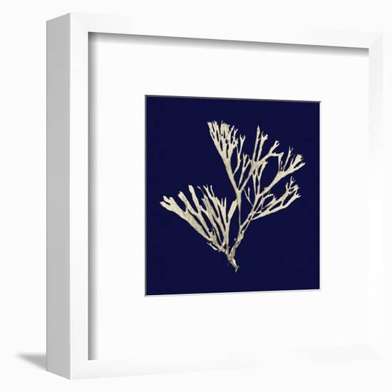 Seaweed on Navy II-Vision Studio-Framed Art Print