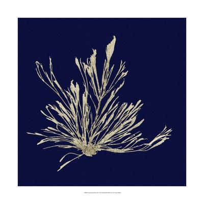 https://imgc.artprintimages.com/img/print/seaweed-on-navy-iii_u-l-ph658v0.jpg?p=0