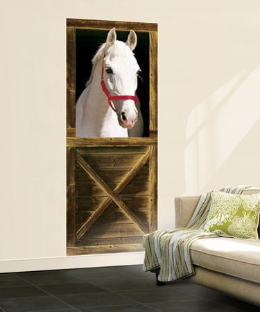 Sebastian Horse Mural