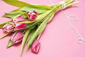 Bouquet, Tulips, Pink, Flowers, Table by Sebastian Scheuerecker