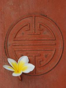Long Life Symbol and Lotus Flower by Sebastien Desarmaux