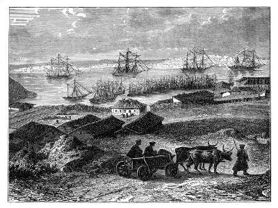 Sebastopol, Crimea, Ukraine, C1888--Giclee Print