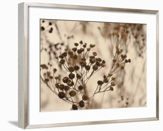 Secret 3-Design Fabrikken-Framed Photographic Print
