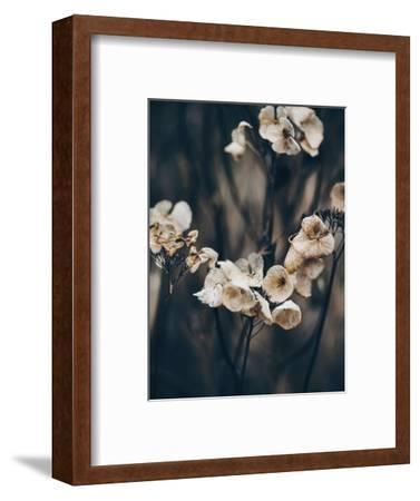 Secret 4-Design Fabrikken-Framed Photographic Print