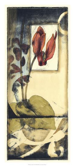 Secret Garden V-Jennifer Goldberger-Giclee Print