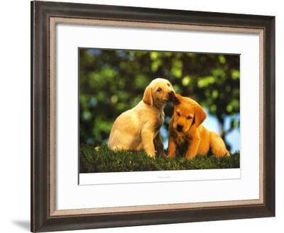 Secrets--Framed Art Print