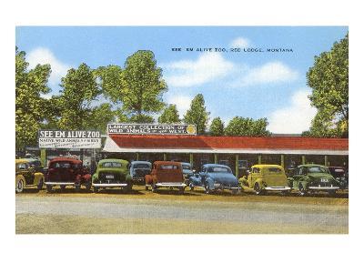 See 'Em Alive Zoo, Red Lodge, Montana--Art Print