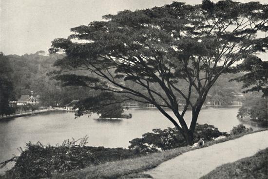 See, Tempel des Heiligen Zahnes und Bibliothek in Kandy, vom Viktoria-Drive ach Osten gesehen-Unknown-Photographic Print