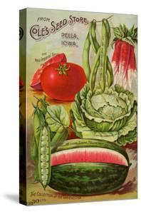 Seed Catalog Captions (2012): Cole's Seed Store, Pella, Iowa, Garden, Farm and Flower Seeds, 1896