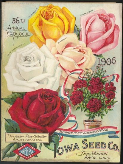 Seed Catalog Captions (2012): Iowa Seed Co. Des Moines, Iowa. 36th Annual Catalogue, 1906--Premium Giclee Print