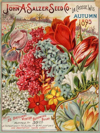 Seed Catalog Captions (2012): John A. Salzer Seed Co. La Crosse, Wisconsin, Autumn 1895--Premium Giclee Print