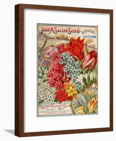 Seed Catalog Captions (2012): John A. Salzer Seed Co. La Crosse, Wisconsin, Autumn 1895--Framed Art Print