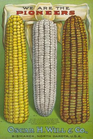 Seed Catalog Captions (2012): Oscar H. Will and Co, Bismarck, North Dakota, 1917