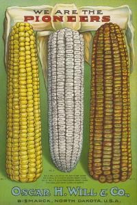 Seed Catalog Captions (2012): Oscar H. Will and Co, Bismarck, North Dakota, 1917