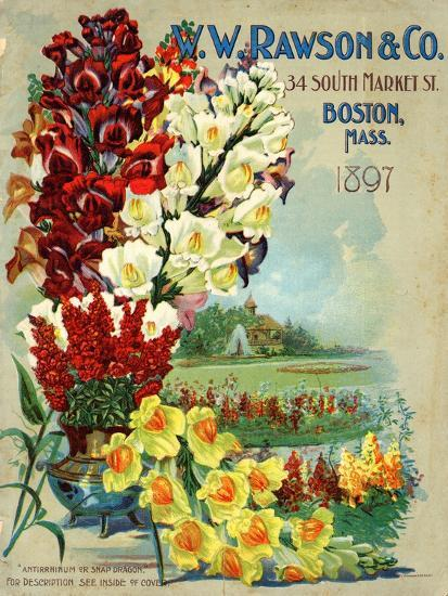 Seed Catalog Captions (2012): W.W. Rawson and Co, Boston, Massachusetts, 1897--Art Print