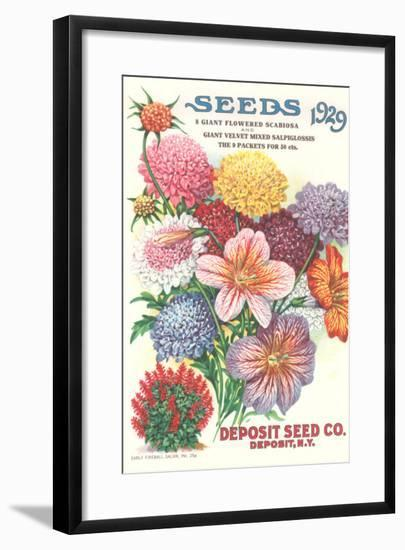 Seed Catalogue with Flower Assortment--Framed Art Print