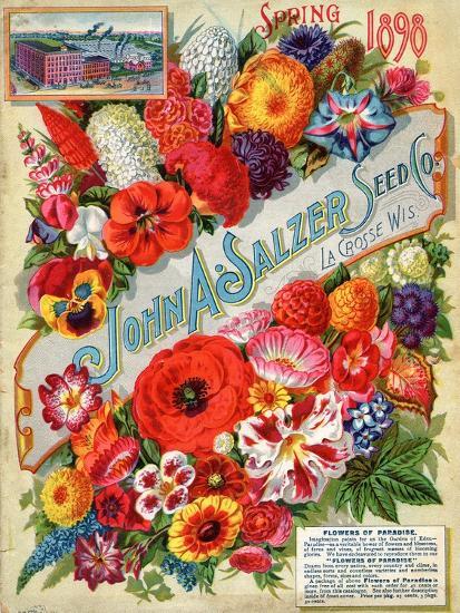 Seed Catalogues: John A. Salzer Seed Co. La Crosse, Wisconsin, Spring 1898--Art Print
