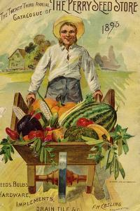 Seed Catalogues: The Perry Seed Store. Syracuse, NY, 1893