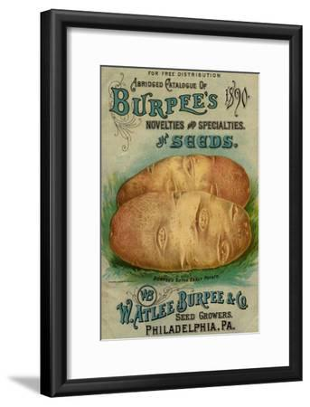 Seed Catalogues: W. Atlee Burpee and Co. Abridged Catalogue of Novelties and Specialties in Seeds