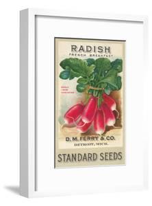 Seed Packet, Radishes
