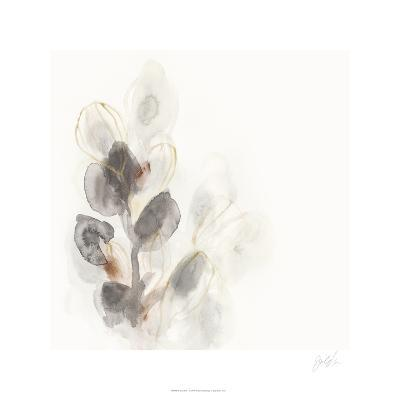 Seed Pod I-June Erica Vess-Limited Edition