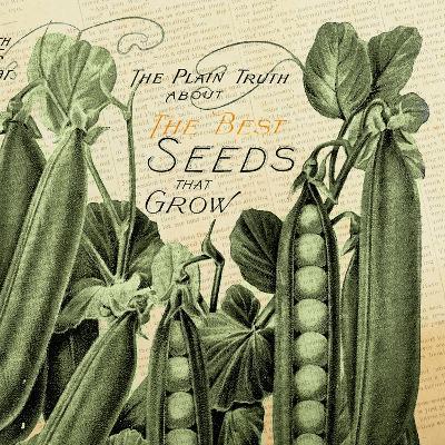 Seeds 1--Giclee Print