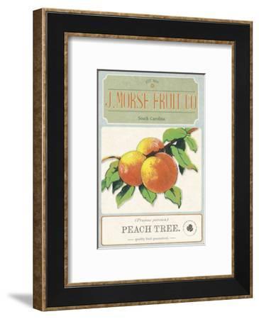 Seeds III-Maria Mendez-Framed Giclee Print