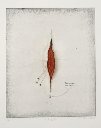 https://imgc.artprintimages.com/img/print/seeds_u-l-f6g6ny0.jpg?p=0